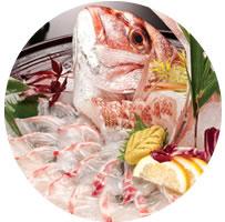 鯛のお刺身の写真
